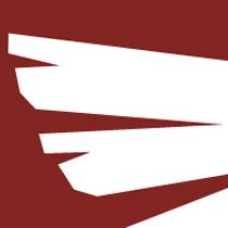 Studio Wings Logo